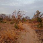 Running Trail | BARAKA