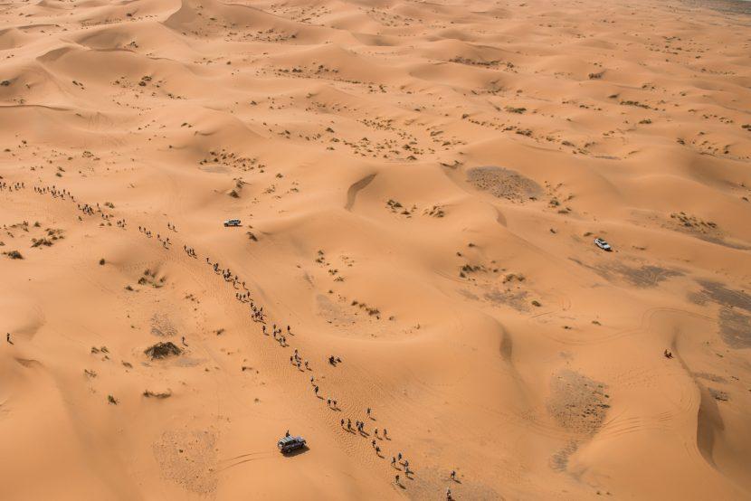 sand mds
